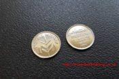Palladium Plated Coins 31116120995 L